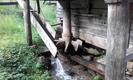 Wasserzuführung vom Oberwasserkanal